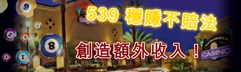 539玩法 穩賺不賠法